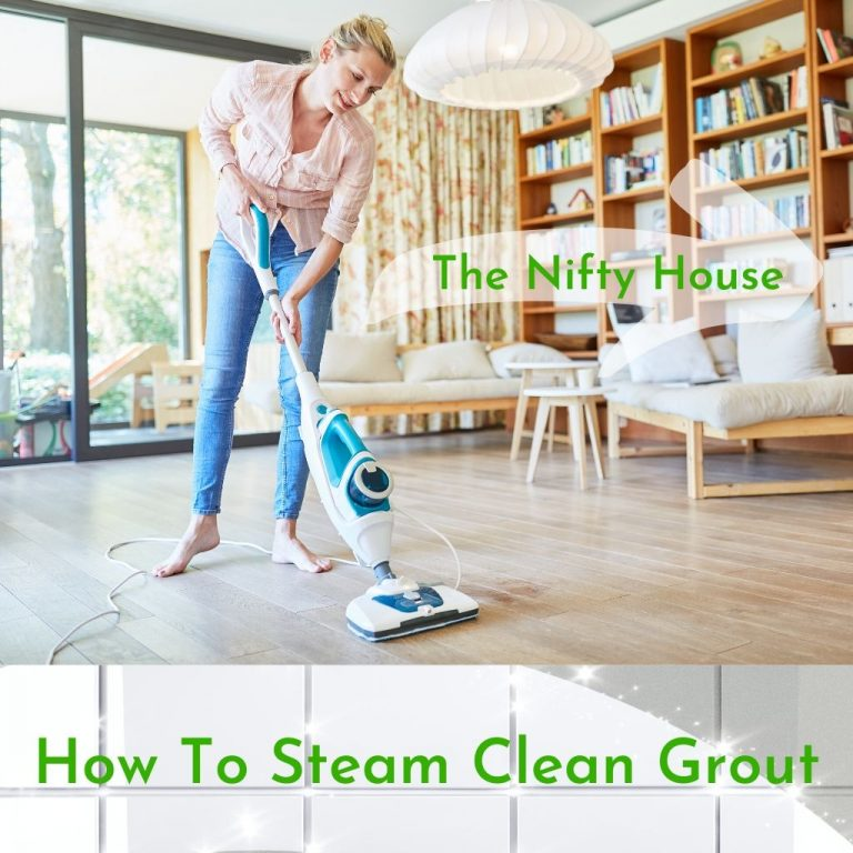 Steam Clean Grout