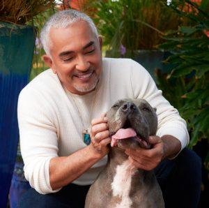 Cesar Millan - Pet Behavior Expert